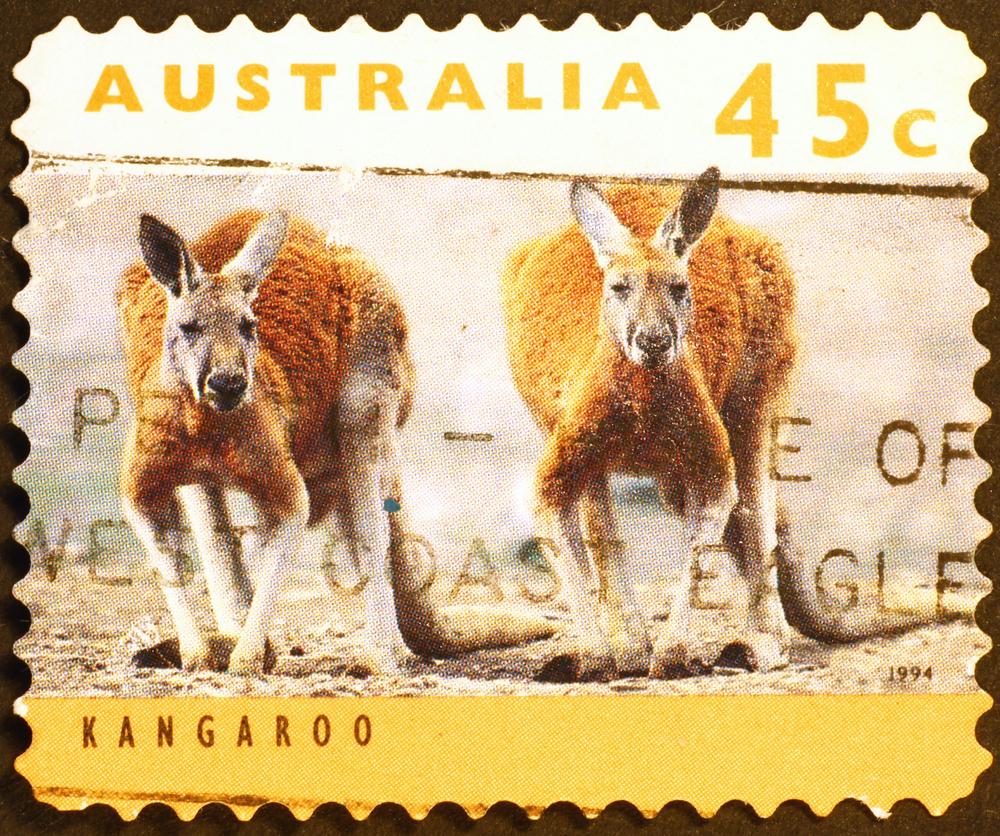Slide 47 of 70: Milan, Italy - August 03, 2015: Two kangaroos on australian postage stamp